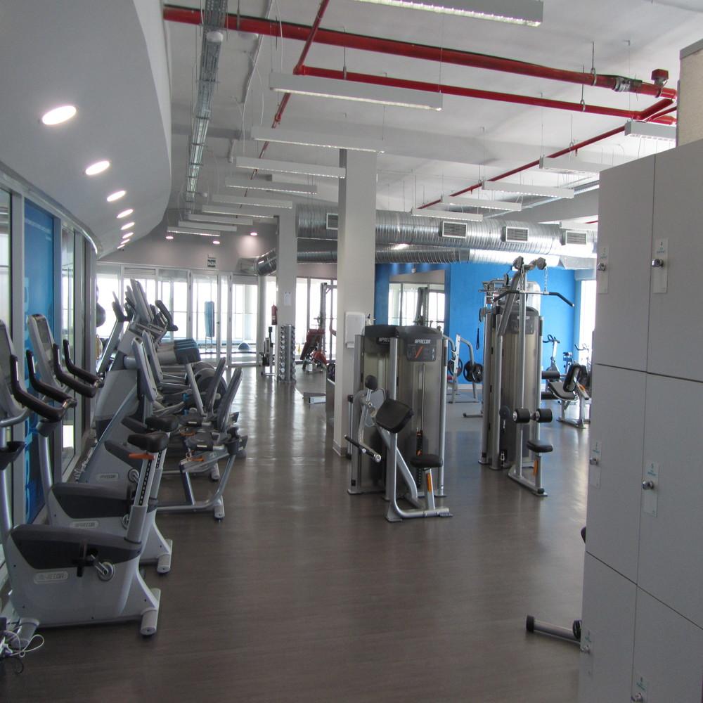sala cardio y musculación